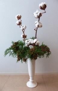 271203ヒノキ実付綿の木