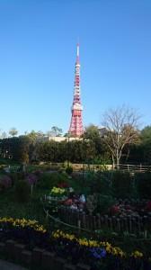 ー東京タワー2017.Apr.小jpg