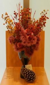 スターシア・サンゴ水木