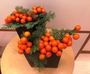 コニカルオレンジ